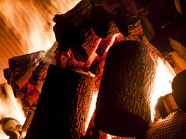 Seasoned logs and firewood for log burners