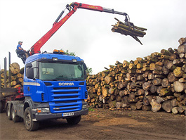 Dedicated firewood log processing yard in Hertfordshire