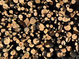 Holts' seasoned logs are air-dried - never kiln-dried